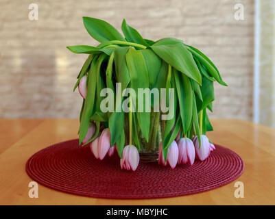 Welke rosa Tulpen in der Vase - Stockfoto