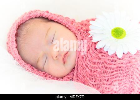 Neugeborene Mädchen schlafen auf Rosa mit Blume. - Stockfoto