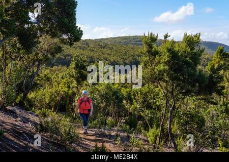 Frau auf Wanderweg in Los Barranquillos, in der Nähe von Vallehermoso, Nationalpark Garajonay, La Gomera, Kanarische Inseln, Spanien - Stockfoto