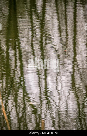 gr nes blatt und pl tschernden wasser stockfoto bild 21889359 alamy. Black Bedroom Furniture Sets. Home Design Ideas