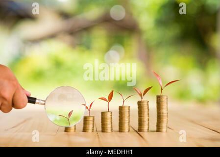 Hand mit Lupe mit Geld wachsende Pflanze Schritt mit Anzahlung Münze. Bank und Investment Business Konzept. - Stockfoto