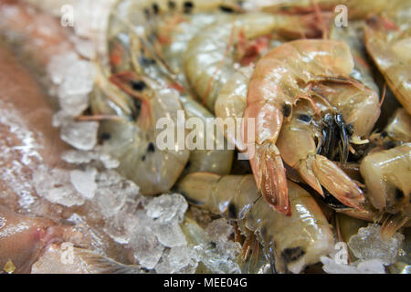 Roher Fisch von Garnelen Schwänze an einem Fish mongers - Stockfoto