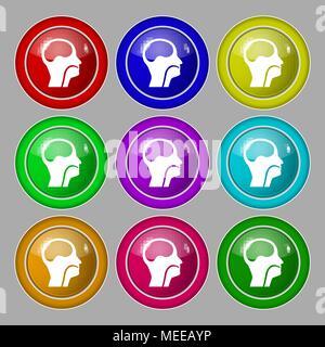 Kehlkopf, Ärzte Hals-, Nasen- und Ohrenheilkunde Symbol unterzeichnen. Symbol auf neun Runden farbigen Buttons. Vector Illustration - Stockfoto