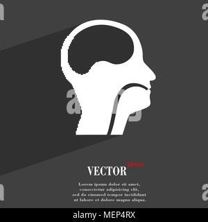 Kehlkopf, Ärzte Hals-, Nasen- und Ohrenheilkunde Symbol flache moderne Web Design mit langen Schatten und Platz für Ihren Text. Vector Illustration - Stockfoto