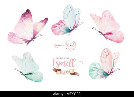 Aquarell bunte Schmetterlinge, auf weißem Hintergrund. Blau, Gelb, Rosa und Rot Butterfly Spring Abbildung. - Stockfoto