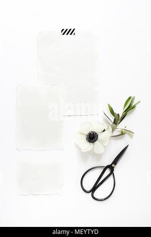 Anemone Blumen flatlay Stockfoto, Bild: 310545146 - Alamy
