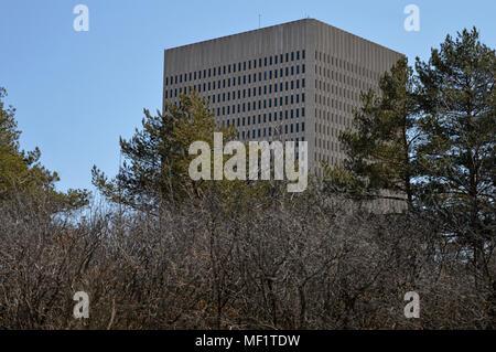 Ein Büro Turm erhebt sich über die Bäume und die Sträucher - Stockfoto
