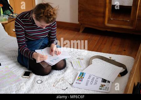 Ein 17-jähriges Mädchen old Studieren für einen ebenen in Ihr Schlafzimmer. - Stockfoto
