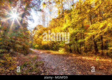 Sunburst und Herbst Farbe im Park im Concord Covered Bridge Historic District in Smyrna, Georgia. - Stockfoto