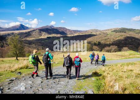 Wanderer Wandern nach unten auf ein Land durch die Landschaft von moel Siabod in Berge von Snowdonia National Park. Capel Curig, Wales, Großbritannien, Großbritannien - Stockfoto
