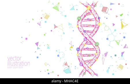 DNA 3D-chemische Molekül Struktur poly niedrig. Polygonale Dreieck Point Line gesunde Zelle teil. Mikroskopische Wissenschaft rote Medizin Genom engineering Vektor-illustration Future Business Technologie - Stockfoto