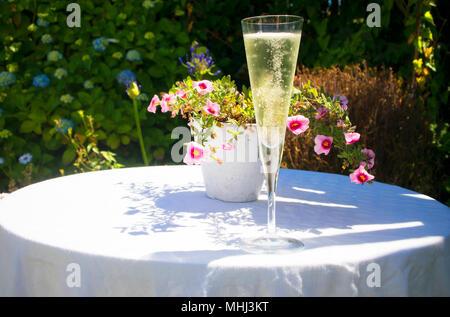 Bei einem Glas Sekt im Sommergarten - Johannes Gollop - Stockfoto