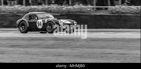 Ford Shelby AC Cobra Sportwagen - Stockfoto