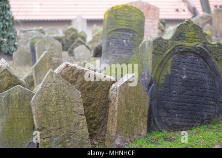 Die 12.000 Grabsteine auf dem Alten Jüdischen Friedhof in Prag zerbröckeln und mit Efeu, gestürzt und zusammengefasst. - Stockfoto