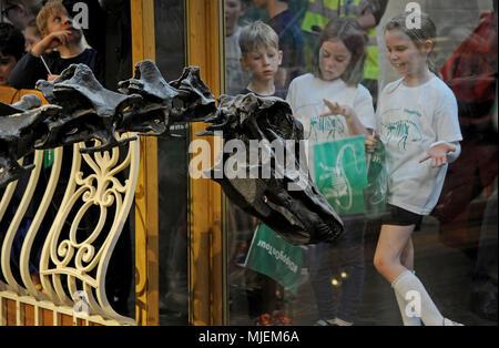 Die Dinosaurier Dippy, Schule Kinder Abschied der Dinosaurier zu Dippy, wie es Dorset County Museum in Dorchester verlässt die Tour mit einem Besuch in Birmingham Museum & Art Gallery, um fortzufahren. Credit: Finnbarr Webster/Alamy leben Nachrichten - Stockfoto