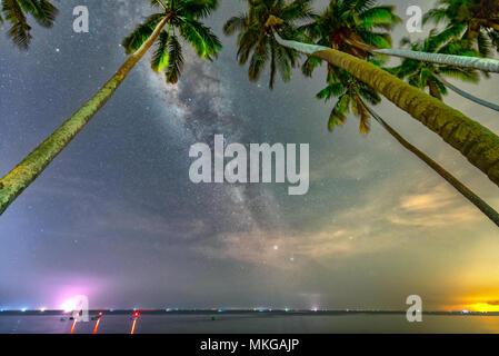 24:00 Landschaft mit Kokospalme Silhouette und die Milchstraße am Himmel an einem schönen Sommerabend. Lange Belichtung Foto. - Stockfoto
