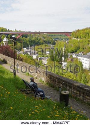 Alte Mann allein sitzen auf einer Parkbank an der Blick über Pfaffenthal und die Großherzogin Charlotte Bridge, Luxemburg Stadt suchen, mit Kopie Raum - Stockfoto
