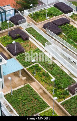 Luftaufnahme von einem Dachgarten bauen auf ein mehrstöckiges Parkhaus - Stockfoto