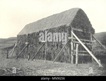 Landwirtschaft. Mc Ainsh-Robertson Korn Trockenständer. Abgeschlossen Stapel alte Drucken 1912 - Stockfoto