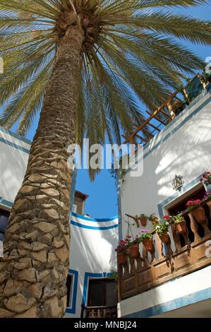 Riesige Palmen wachsen zwischen und über die Häuser und die Schatten in der Stadt von Puerto de Mogan, Gran Canaria, Spanien - Stockfoto