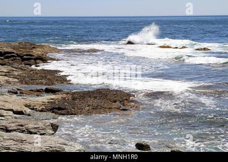 Backpage newport rhode island frauen suchen männer