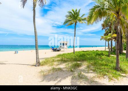 Paradise Strand bei Fort Lauderdale in Florida an einem schönen Sommer Tag. Tropischer Strand mit Palmen am weißen Strand. USA. - Stockfoto