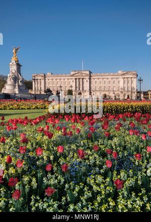 Buckingham Palace im Frühjahr, London, England, Großbritannien - Stockfoto