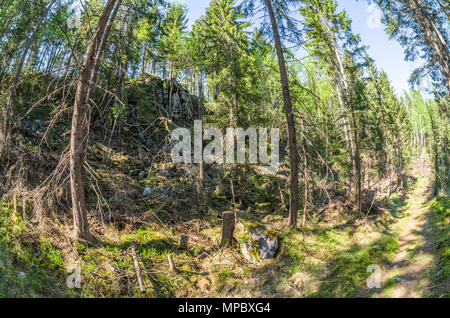 Trekkingrouten in Lillomarka in der Nähe von Oslo, Norwegen, Frühjahr, sonnigen Tag. - Stockfoto