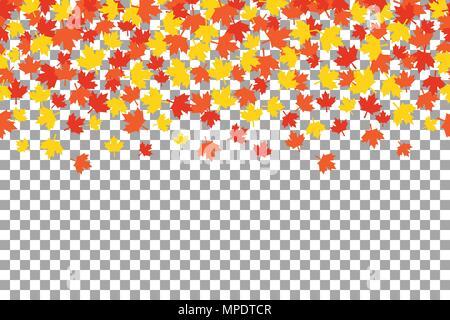 Nahtlose Muster mit Maple Leafs für Thanksgiving Day Feier auf transparenten Hintergrund. Vector Illustration. Danksagung Hintergrund witn orange - Stockfoto