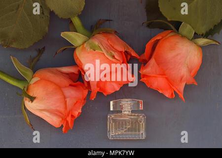 Miniatur Flasche Parfüm neben den drei Rosen auf Holz- Hintergrund - Stockfoto