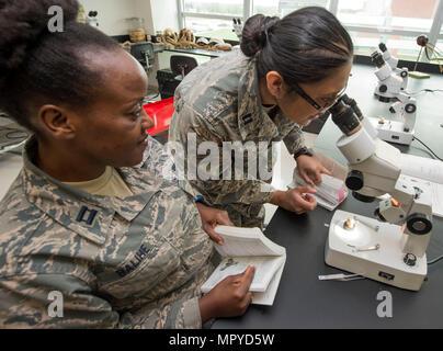U.S. Air Force Kapitäne Michele Balihe (links) und Caroline Brooks (rechts), USAF School of Aerospace Medicine Public Health Education Division Studenten, beobachten durch ein Mikroskop eine medizinisch bedeutsame Fliege der Dipteren-Familie innerhalb der Entomologie-Labor an der 88. Aerospace Medicine Squadron, Wright-Patterson Air Force Base in Ohio, 21. April 2017. 88. AMDS Studenten lernen, wie man medizinisch bedeutsame Insekten in ihrer Umgebung angemessene Risikominderung um Flieger sicher identifizieren. (US Air Force Foto von Michelle Gigante/freigegeben) - Stockfoto