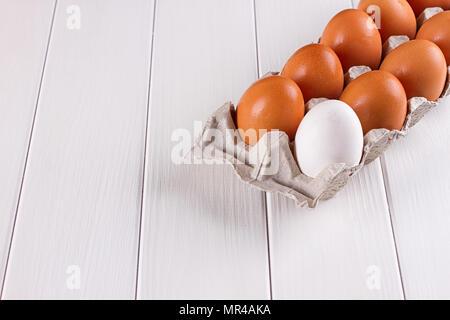 Container von zehn Eier. Neun Eier Braun ein Ei weiß. auf weißem Hintergrund. - Stockfoto
