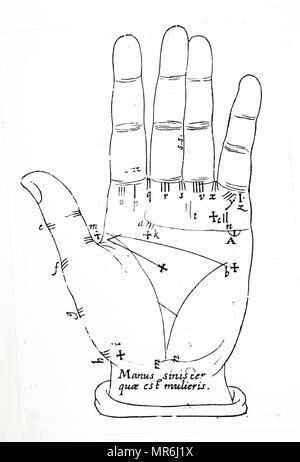 Abbildung: die allgemeinen Linien der Hand. Die Leitungen werden ...