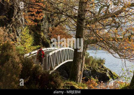Ein Wanderer kreuzt ein Mann aus Metall Brücke entlang einer öffentlichen Fußweg um den Rand des Loch Loman, Schottland an einem sonnigen Herbsttag. - Stockfoto