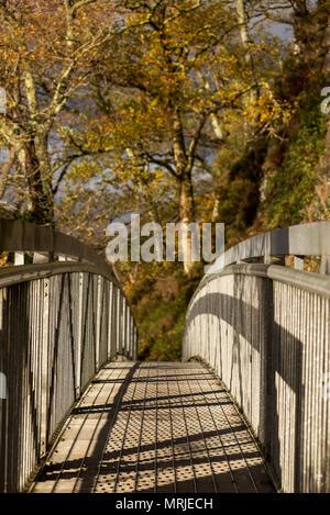 Ein Mann Metal Bridge entlang einer öffentlichen Fußweg um den Rand des Loch Loman, Schottland an einem sonnigen Herbsttag. - Stockfoto