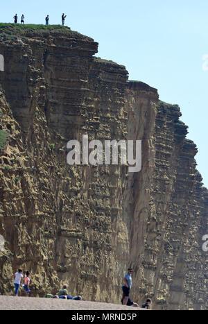 Touristen riskieren ihr Leben East Cliff an der West Bay, Dorset, UK Credit: Finnbarr Webster/Alamy leben Nachrichten - Stockfoto