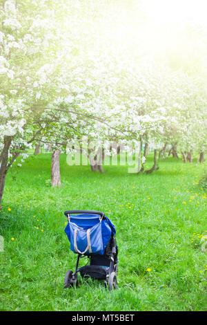 Blau Baby Stroller Beförderung auf grünem Gras in den weiß blühenden apple Garten. Mutterschaft Mutterschaft Konzept - Stockfoto
