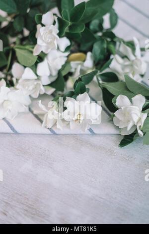 Kap Jasminblüten mit blauen Streifen weiß Serviette auf hölzernen Tisch - Stockfoto