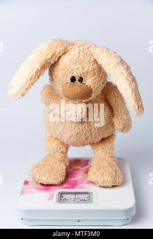 Ein Plüschtier Kaninchen steht auf der Waage. - Stockfoto