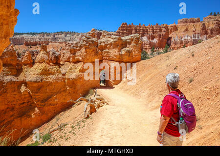 Tür auf Queen's Garden Wanderweg, Bryce Canyon National Park, UT - Stockfoto