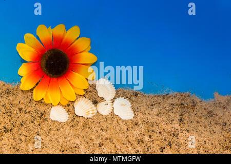 Minimalistischen Hintergrund für den Sommer mit Schnecken Muscheln Schutzbrille und Sand auf himmlische - Stockfoto