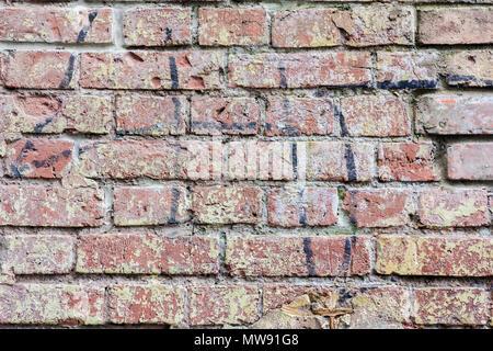 Hintergrund der alten Vintage schmutzige Backsteinmauer, Oberfläche close-up. Bunte grunge Textur der Wand mit abblätternden Putz, kopieren Raum - Stockfoto