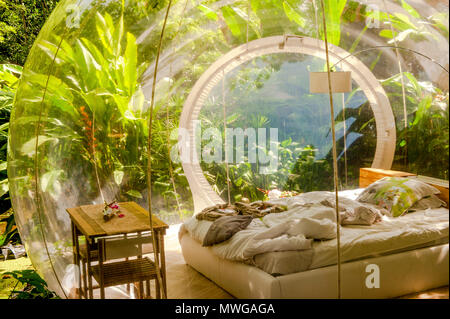 Camping in der Wildnis im Domaine des Bulles, Le Vauclin, Martinique - Stockfoto