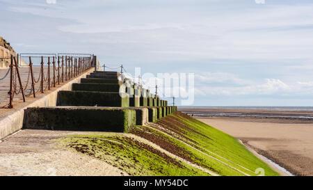 Die konkreten Sea Wall bei Blackpool Beach ist grün durch das Meer bei Ebbe Pflanzen gefärbt. - Stockfoto