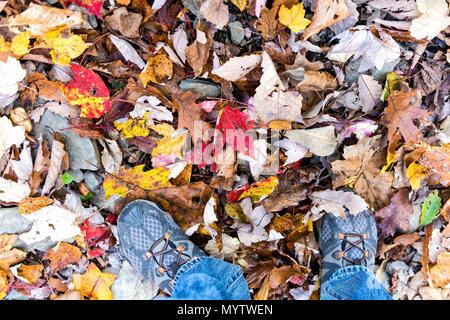 Schuhe, gefallenen Herbst braun, orange, rot, golden viele Blätter auf dem Boden mit den Füßen flach des Menschen legen, Ansicht von oben nach unten in Harper's Ferry, West Virginia - Stockfoto