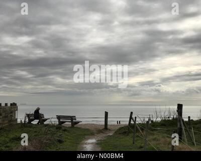 Marine Dr W, West Wittering, Chichester, UK. 12. März 2017. UK-Wetter: Sonnig bei Wittering. W Wittering Strand, - Stockfoto