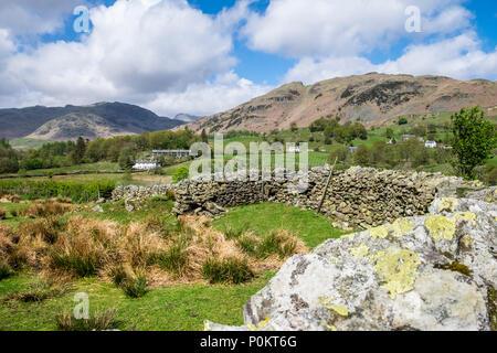 Lingmoor und seitlichen Hecht aus der Nähe von Elterwater, Lake District, Cumbria, England - Stockfoto