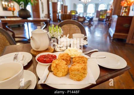 Nachmittagstee für Zwei, traditionellen Nachmittagstee mit einer Kanne Tee, Clotted Cream, Erdbeermarmelade und vier Scones im Amangalla Hotel, Galle, Sri Lanka - Stockfoto