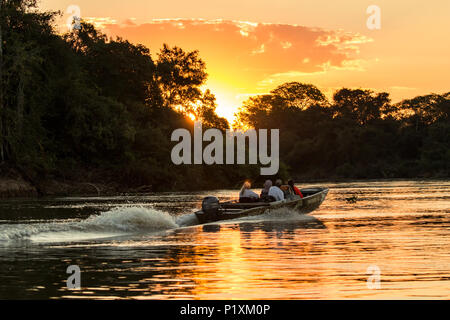 Pantanal, Mato Grosso, Brasilien, Südamerika. Boot voller Touristen home Beschleunigung am Ende eines Tages von Wildtieren beobachten. (Für redaktionelle uns - Stockfoto