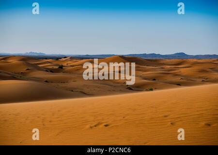 Sanddünen, in der Nähe von Merzouga, Erg Chebbi, Sahara, Marokko, Afrika - Stockfoto